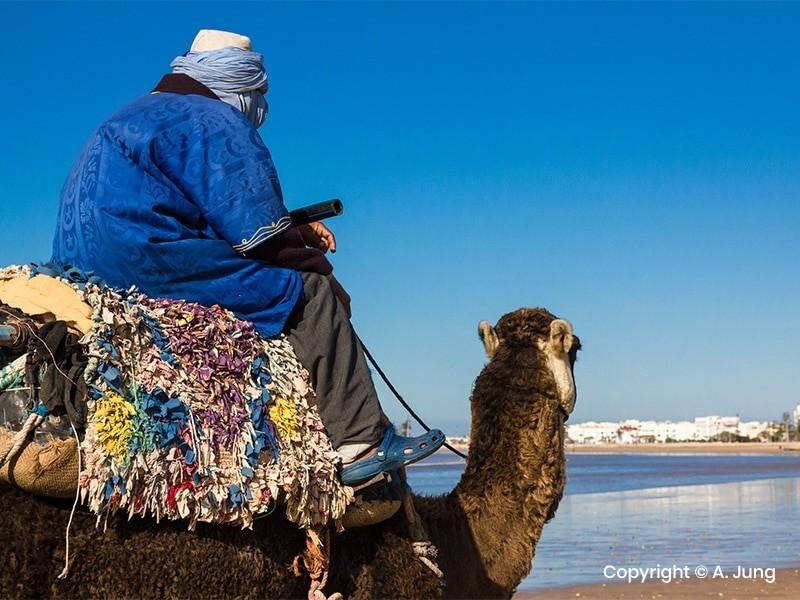 Morocco Camel Trekking - Essaouira