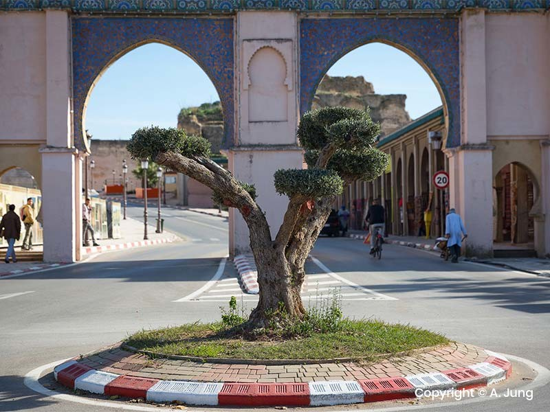 Tour Tangier - Chefchauen